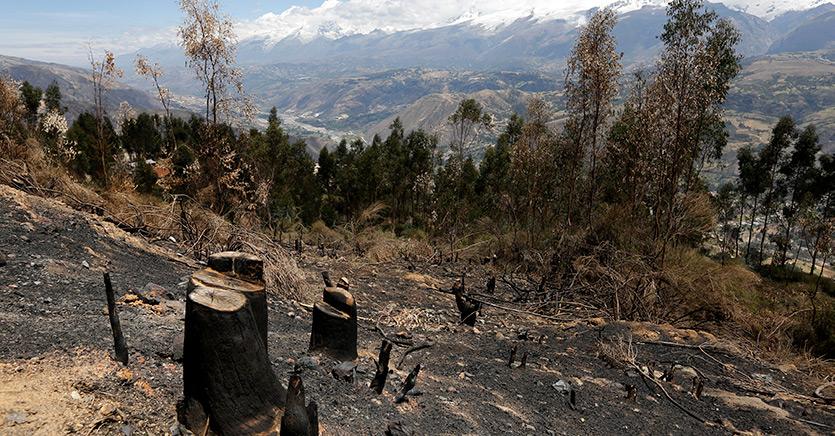 Amazzonia, così la tecnologia in mano agli indigeni può salvarla dalla deforestazione